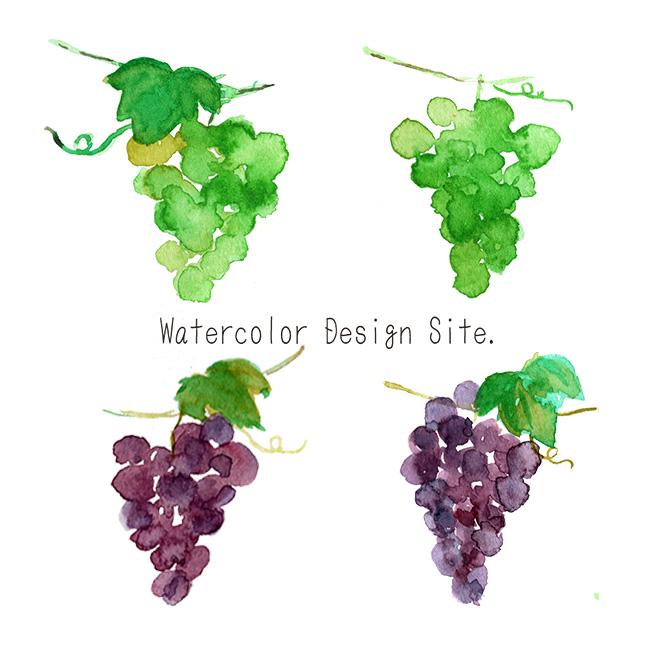 水彩ぶどうイラスト Watercolor Design Site